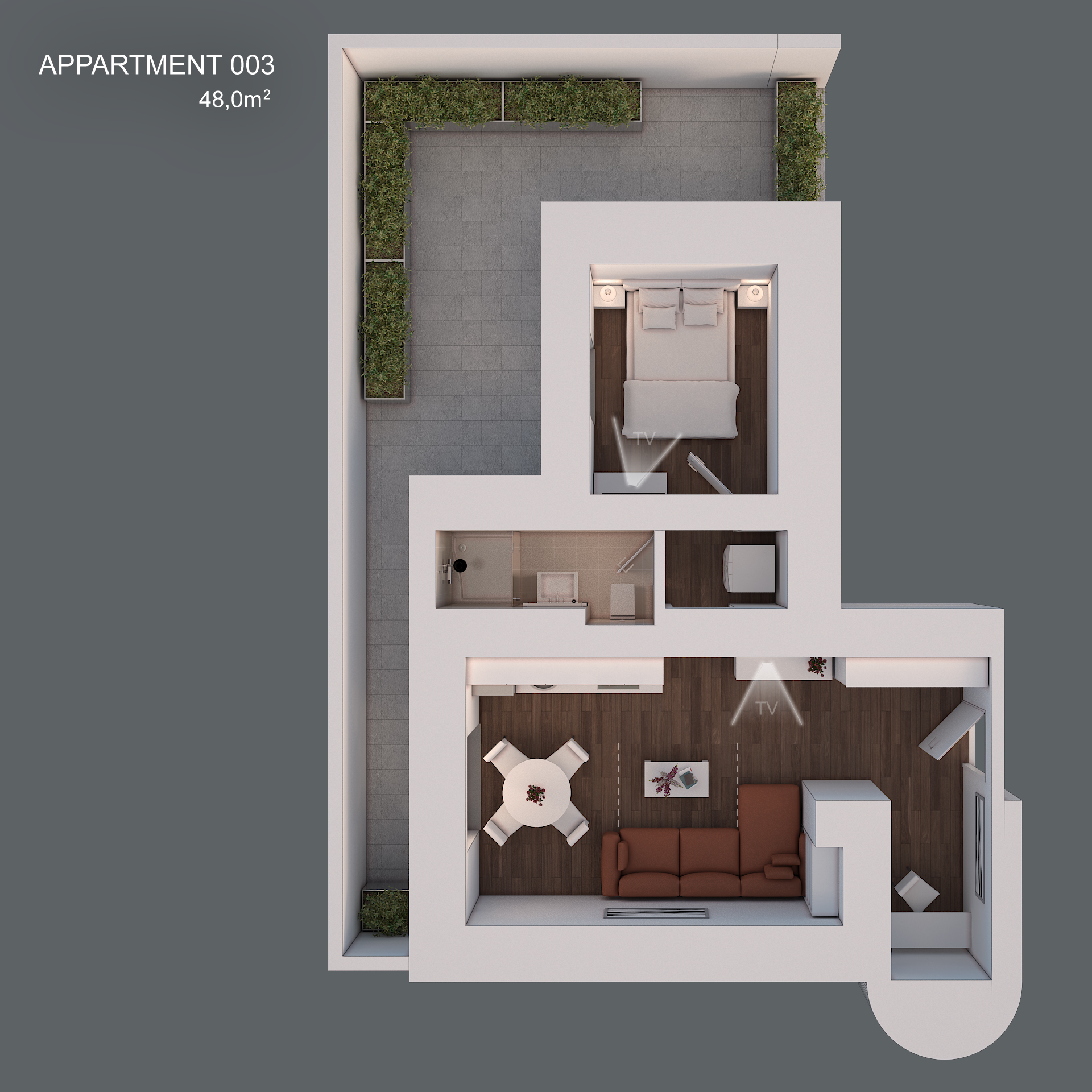 Apartment 003 layout