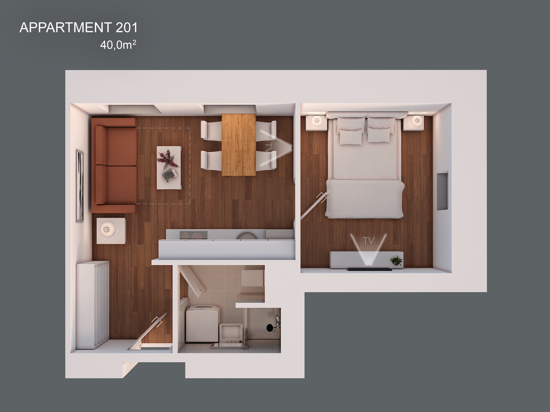 Apartment 201 layout